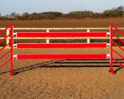 Red show jump Planks